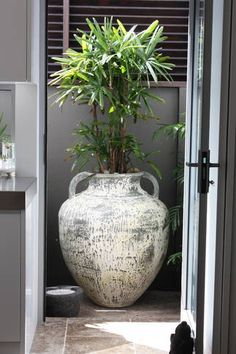 #pottery #jar in the outside bathroom. Four Seasons Manly | Manly Beach, NSW | Accommodation