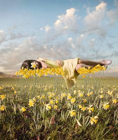 Yellow Korner  Photograph Yellowbud Alastair Magnaldo