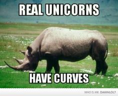 Don't Let The Media Change Your Views Of Unicorns - Damn! LOL