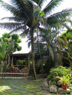Ecuador, Beach Trip, Tropical, Travel, Sun, Paths, Vacations, Beach, Viajes