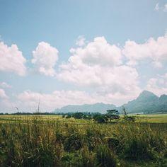 Where Jurassic park and Avatar were filmed. Landscape in Hawaii USA.   IG: NeoNorth   #hawaii #jurassicpark #avatar #hike #hiking #backpacking #photography  #landscape #landscapephotography #travelblogger #travel #travelblog #travelblogger #traveltips #passionpassport #traveldeeper #traveltheworld #instatravel  #instagram #travellife #livefolk #photooftheday #vacation #gypsy #wanderlust #igtravel #passportready #travelgram #nakedplanet #travelprimeshot #gopro   #travelpics #digitalnomad
