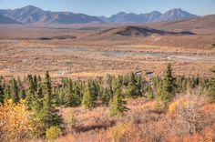 First McKinley View in Denali Park 63.712123,-149.148388 (4hr 29m north of Anchorage)