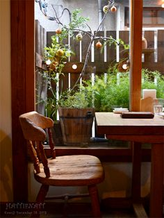 Woods, Dining Chairs, Earth, Plants, Furniture, Home Decor, Dinner Chairs, Homemade Home Decor, Dining Chair