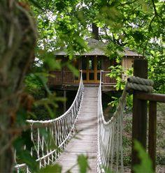 Casa na árvore:Com ponte e tudo mais...