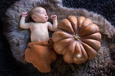 Photos Nouveau né, Baby poing seance en studio Marseille Pumpkin, Studio, Photos, Marseille, Photography, Pumpkins, Pictures, Photographs, Studios