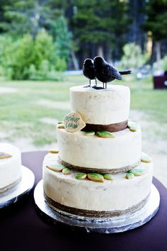 Rustic wedding cake with the cutest bird cake topper