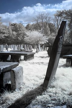 Historic Eastham Village, old graveyard (this is infrared photography). Highgate Cemetery, Cemetery Art, Old Cemeteries, Graveyards, Hollywood Cemetery, Infrared Photography, Famous Graves, Real Ghosts, Dark Places