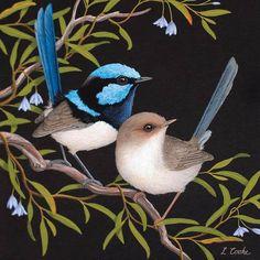 Australian Superb Blue Wrens And Bluebell Creeper Pretty Birds, Beautiful Birds, Bird Painting Acrylic, Australia Animals, Australian Birds, Fantasy Paintings, Bird Illustration, Bird Pictures, Aboriginal Art