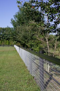 Combining the safety and strength of Flex Fence® with a mesh wire fence, you can safely contain your animals. The mesh helps keep them in and predators out! We encourage you to make a fence system that works best for your property and a lot of the times, that means combing different fences. On this fence system, Shockline is also used as a top rail to prevent the horses from both eating vegetation and jumping over. #horses #flexfence #shockline #equestrian #rammfence #meshfence #horsefence #farm