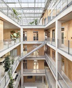 H Arquitectes + DATAAE Plywood