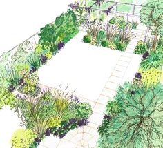 Imaginative design for a small urban back garden including a pergola, paving and paths to bring structure to the space.