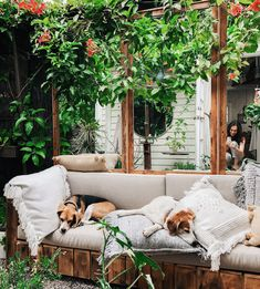 Before + After: Back Garden Sofa - Patio/Garden - Design Rattan Furniture Small Courtyard Gardens, Small Courtyards, Back Gardens, Small Gardens, Landscape Design, Garden Design, Compost Tumbler, Tropical Bedrooms, Ficus Tree