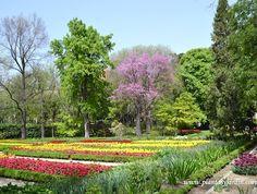 Real Jardín Botánico en #Madrid