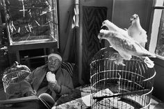 Henri Matisse, Vence, France, 1944, by Henri Cartier Bresson