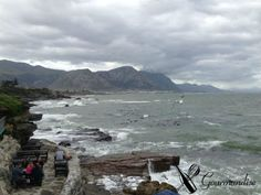 view at Bientang's Cave - Hermanus Bay (South Africa) Cape Town South Africa, Cave, Tours, Outdoor, Whale Watching, Viajes, Gourmet, Outdoors, Caves