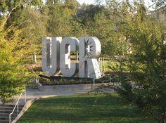 21 Best UC Riverside Go Highlanders images