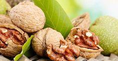 Целебные свойства грецкого ореха