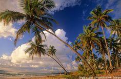 Nascer do sol na praia do Cassange, península de Maraú, litoral sul do estado da Bahia, Brasil.