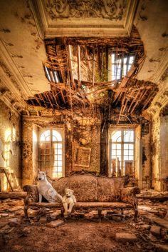 Urbex Dog – Une photographe explore les lieux abandonnés avec son chien