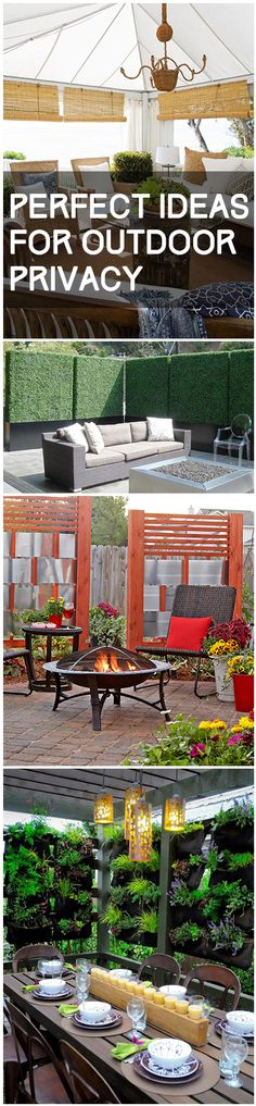 Great options for outdoor privacy- living fences, privacy screens, outdoor curtains and other great outdoor privacy ideas.