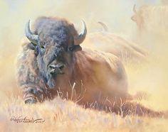 """""""Resting Bull - Bison"""" by Dustin Van Wechel"""