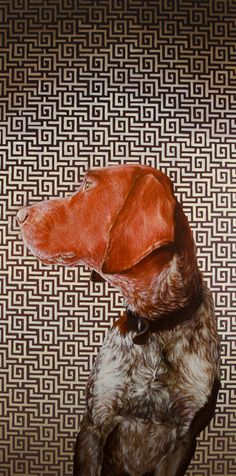 Dog Portraits & Paintings by Dana Hawk -