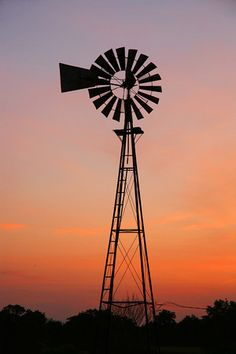 Illinois Windmill.  It might be in Illinois but there are tons of these in #Australia  http://www.amazon.com/Gael-McCarte/dp/1935434535/ref=sr_1_1?s=books=UTF8=1295287982=1-1
