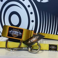 The Hot Yellow  collars and leashes of the brand @ExtremeDogGear. If you looking for a fashion strong collar that suits you and is better for the neck of your dog.      www.extremedoggear.com         P.s. a good nice looking Extreme Dog Gear collar for a dog is more than just a collar.....