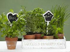 Nice Chalkboard Garden Stakes   Flowers | ♥ Home U0026 Spaces ♥ | Pinterest | Garden  Stakes, Chalkboards And Spaces