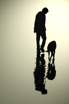 man & his dog reflection