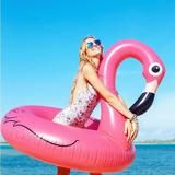 120CM Inflatable Flamingo Pool Toy Float Pink Cute Ride-On – aststore17