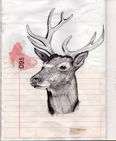 venado : collage with stag Deer Art, Moose Art, Drawing Sketches, Art Drawings, Deer Drawing, Bambi, Wolf, Oh Deer, Illustrations