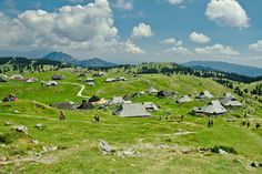 Velika planina summer 2013 by Manuel Ferfoglia on 500px