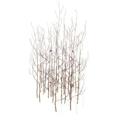 Aspen Metal Art ($159) ❤ liked on Polyvore featuring home, home decor, wall art, backgrounds, art, effects, fillers, abstract home decor, wall hanging and tree wall art
