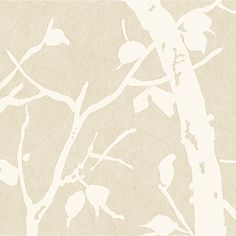 Thibaut - T7066   Pattern PARKLAND   Wallpaper  Collection Natural Resource  Colorway Beige
