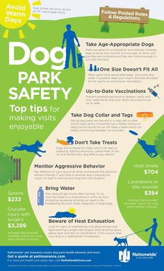 Dog Park Rules and Safety Tips Dog Essential Tips & Hacks to walk in the park Safely With Your Dog