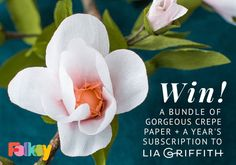Win a Lia Griffith membership plus a bundle of gorgeous crepe papers Contest Rules, Crepe Paper, Craft Projects, Craft Ideas, Paper Flowers, Book Art, Sewing Crafts, Finding Yourself, Paper Crafts
