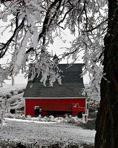 Cedarburg Barn near Colfax, WA.