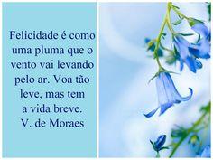 Mensagens-blog Entre Arte, Poesias e Cartões Flores e Belezas da natureza: Vinicius de Moraes N.27