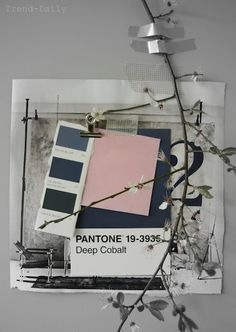 Pantone colours mood board featuring twigs and pastels. Web Design, Design Blog, Design Ideas, Soft Summer, Colour Schemes, Color Trends, Color Palettes, Color Combos, Inspirations Boards