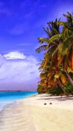 Paradise Beach, Island, Maldives