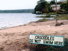 ...so go ahead and take a dip!