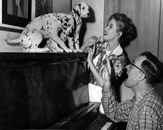 A Cute, Fluffy Look Behind the Scenes of 101 Dalmatians | Disney Insider | Articles