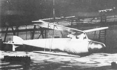 フリーダーマウス(Fledermaus)。ドイツ帝国に拠点を置くSiemensによって第一次世界大戦中に開発されてた無人爆撃機の一つ。ツェペリンL35飛行船から空中発進して100kgの爆弾を投下してパラシュートでの回収を考慮する。