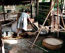 Os waláya aparecem na mitologia e nos rituais de iniciação das meninas e meninos baniwa. Tradicionalmente, os meninos aprendem a fazer cestas deste tipo e ofertá-las às suas amigas rituais, ao término do período de reclusão. Os Baniwa usam os waláya makapóko = balaios grandes, para recolher a massa de mandioca (antes e depois de espremer no tipiti) e para servir beiju e farinha nas refeições. Serve de suporte para presentear com frutas e outros alimentos.