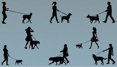 A Collection of women dog walkers silhouette dog walkers. This vector files are perfect for graphic design work on dog training, Vector illustration of women walking their dogs. including vector graphics of women running, walking and playing with dogs. Also can be used for graphic related to dog excerising, Each file contains a high level of details.