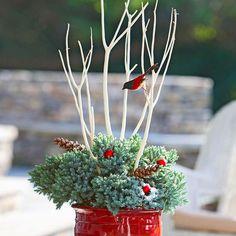 weihnachten außendekoration  dunkelroter Blumentopf, Tannenzweige und kleine rote Bälle
