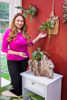 #ShirleyBovshow has creative ways to mount staghorn ferns on our wall.  #HomeandFamilyTV