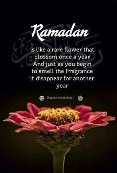 Eid is the festival of decent happiness,joy and it all about the celebration of successfull Ramadan. Hadith Quotes, Muslim Quotes, Quran Quotes, Religious Quotes, Qoutes, Allah Quotes, Beautiful Islamic Quotes, Islamic Inspirational Quotes, Fasting Ramadan