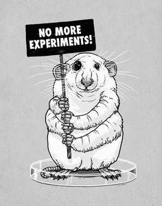 Stop Animal Testing!!
